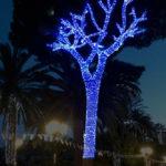verdina luminarie feste di luglio 2017 rapallo